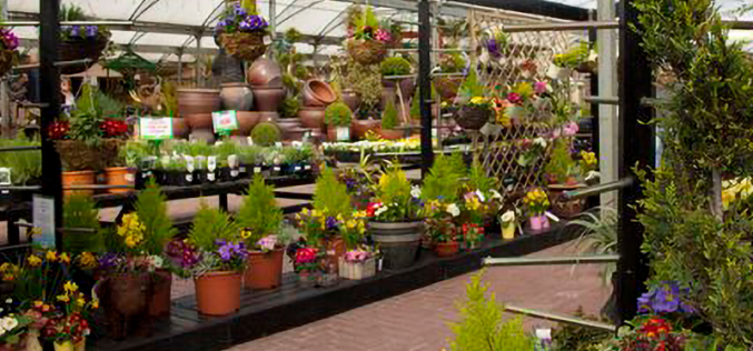 Gordons and KPMG support garden centre acquisitions
